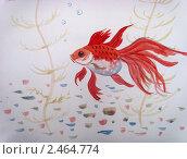 Золотая рыбка. Стоковое фото, фотограф Заварзин Олег / Фотобанк Лори