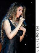 Купить «Габриэла Gabriella. Бразильская певица», эксклюзивное фото № 2465954, снято 18 марта 2011 г. (c) Андрей Дегтярёв / Фотобанк Лори