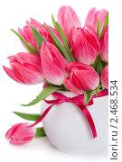 Купить «Розовые тюльпаны», фото № 2468534, снято 7 апреля 2011 г. (c) Наталия Кленова / Фотобанк Лори