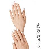 Купить «Аккуратные женские руки на белом фоне», фото № 2469670, снято 15 ноября 2018 г. (c) Buka / Фотобанк Лори