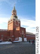Купить «Спасская башня Московского Кремля», фото № 2478250, снято 7 января 2011 г. (c) Elena Monakhova / Фотобанк Лори