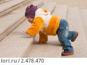Купить «Ребёнок ползет по лестнице», фото № 2478470, снято 13 марта 2011 г. (c) WalDeMarus / Фотобанк Лори