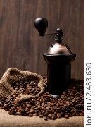 Купить «Ручная кофемолка и горсть кофейных зерен», фото № 2483630, снято 16 марта 2011 г. (c) Юлий Шик / Фотобанк Лори