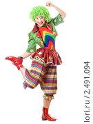 Купить «Девушка в одежде клоуна», фото № 2491094, снято 21 ноября 2009 г. (c) Сергей Сухоруков / Фотобанк Лори