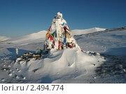 Купить «Тувинские чалами», фото № 2494774, снято 7 ноября 2009 г. (c) Владимир Никитин / Фотобанк Лори