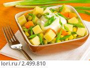 Купить «Сырный салат с кукурузой и зеленым горошком», фото № 2499810, снято 26 апреля 2011 г. (c) Ольга Иванова / Фотобанк Лори
