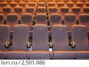 Купить «Удобные кресла в кинотеатре», фото № 2501086, снято 19 апреля 2010 г. (c) Василий Козлов / Фотобанк Лори