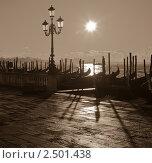 Купить «Гондолы в свете солнца. Венеция», фото № 2501438, снято 27 ноября 2010 г. (c) Victoria Demidova / Фотобанк Лори