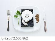 Купить «Жесткий диск на тарелке», фото № 2505862, снято 30 апреля 2011 г. (c) Михайлов Виталий / Фотобанк Лори