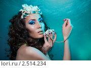 Купить «Сокровища подводного мира», фото № 2514234, снято 26 февраля 2011 г. (c) Сергей Новиков / Фотобанк Лори