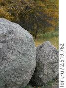 Большие камни в лесу. Стоковое фото, фотограф Евгений Заржицкий / Фотобанк Лори