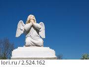 Купить «Скульптура молящегося ангела», фото № 2524162, снято 10 мая 2011 г. (c) Сергей Куров / Фотобанк Лори