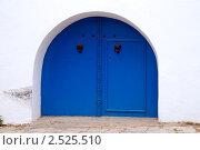 Бело-голубой город Сиди-бу-Саид (Тунис) (2011 год). Стоковое фото, фотограф Некрасов Андрей / Фотобанк Лори