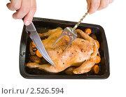 Купить «Запечённая курица на противне», фото № 2526594, снято 7 октября 2010 г. (c) Яков Филимонов / Фотобанк Лори