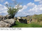 Купить «Авиловы горы в Белой Калитве», фото № 2527154, снято 1 мая 2011 г. (c) Борис Панасюк / Фотобанк Лори