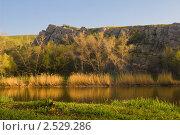 Купить «Освещённые утренним солнцем берега реки», фото № 2529286, снято 1 мая 2011 г. (c) Борис Панасюк / Фотобанк Лори