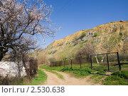 Купить «Садоводческое товарищество у подножия Авиловых гор в Белой Калитве», фото № 2530638, снято 1 мая 2011 г. (c) Борис Панасюк / Фотобанк Лори
