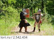 Купить «Битва рыцарей», фото № 2542434, снято 5 июня 2010 г. (c) Яков Филимонов / Фотобанк Лори