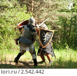 Купить «Битва рыцарей», фото № 2542442, снято 5 июня 2010 г. (c) Яков Филимонов / Фотобанк Лори