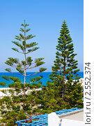 Купить «Вид из отеля в Греции, хвойные деревья, остров Крит», фото № 2552374, снято 8 сентября 2010 г. (c) ElenArt / Фотобанк Лори