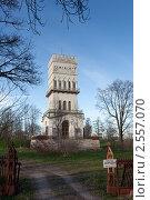 Пушкин. Белая Башня. Стоковое фото, фотограф Евгений Медведев / Фотобанк Лори
