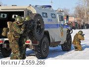 Купить «Показательное выступление спецназа», эксклюзивное фото № 2559286, снято 18 марта 2011 г. (c) Free Wind / Фотобанк Лори