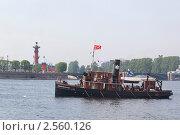 Купить «Парад старых пароходов», фото № 2560126, снято 28 мая 2011 г. (c) Юрий Каркавцев / Фотобанк Лори