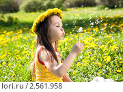 Купить «Маленькая девочка», фото № 2561958, снято 19 мая 2011 г. (c) Серёга / Фотобанк Лори