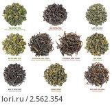 Купить «Коллекция китайского чая», фото № 2562354, снято 17 мая 2011 г. (c) Анна Кучерова / Фотобанк Лори