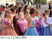 Купить «Молодая смена актеров на кинофестивале», фото № 2562486, снято 10 мая 2010 г. (c) ElenArt / Фотобанк Лори