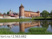 Купить «Маринкина башня Коломенского кремля, Коломна», фото № 2563682, снято 28 мая 2011 г. (c) Natalya Sidorova / Фотобанк Лори