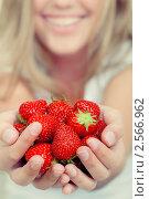 Купить «Красная клубника в женских руках», фото № 2566962, снято 20 мая 2011 г. (c) Наталия Кленова / Фотобанк Лори