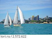 Купить «Крейсерские яхты под парусами на фоне побережья курорта Сочи», фото № 2572622, снято 28 мая 2011 г. (c) Анна Мартынова / Фотобанк Лори