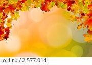 Купить «Фон с осенними листьями», иллюстрация № 2577014 (c) Владимир / Фотобанк Лори