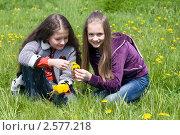 Купить «Две девочки подружки на зелёной лужайке с желтыми одуванчиками», фото № 2577218, снято 2 июня 2011 г. (c) RedTC / Фотобанк Лори