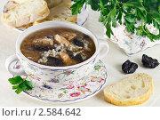 Купить «Куриный суп с рисом и черносливом», эксклюзивное фото № 2584642, снято 22 марта 2011 г. (c) Лидия Рыженко / Фотобанк Лори