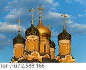 Купола Знаменского собора на улице Варварка. Москва (2011 год). Стоковое фото, фотограф Victoria Demidova / Фотобанк Лори