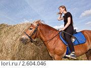 Купить «Вкусное сено», фото № 2604046, снято 15 июня 2011 г. (c) Вадим Ратников / Фотобанк Лори