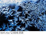 Купить «Зимняя фантазия, морозный узор на стекле», фото № 2604558, снято 11 июня 2010 г. (c) ElenArt / Фотобанк Лори