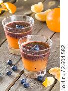 Купить «Фруктовый коктейль (смузи) из черники и апельсинового сока», эксклюзивное фото № 2604582, снято 15 июня 2011 г. (c) Давид Мзареулян / Фотобанк Лори