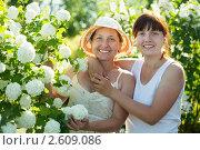 Купить «Садовницы рядом с цветущим кустом», фото № 2609086, снято 5 июня 2011 г. (c) Яков Филимонов / Фотобанк Лори