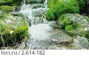Купить «Небольшой водопад в горном лесу», видеоролик № 2614182, снято 18 октября 2010 г. (c) Николай Михальченко / Фотобанк Лори