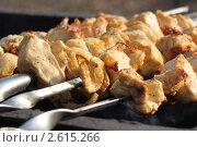 Шашлык из курицы. Стоковое фото, фотограф Александр Дашаев / Фотобанк Лори