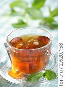 Купить «Мятный чай», фото № 2620158, снято 30 марта 2011 г. (c) Stockphoto / Фотобанк Лори
