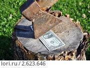 Купить «Один доллар на пеньке», фото № 2623646, снято 14 ноября 2019 г. (c) Мастепанов Павел / Фотобанк Лори