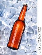 Купить «Пиво охлаждается», фото № 2627922, снято 26 июня 2019 г. (c) Юдин Владимир / Фотобанк Лори
