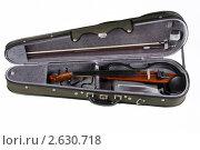 Электронная скрипка в футляре. Стоковое фото, фотограф Александр Кадацкий / Фотобанк Лори