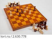 Шахматы. Стоковое фото, фотограф Александр Кадацкий / Фотобанк Лори