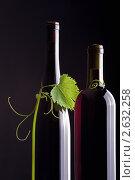 Бутылки с вином и ветка винограда (2011 год). Редакционное фото, фотограф Сергей Клопотов / Фотобанк Лори
