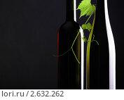 Бутылки с вином и ветка винограда. Стоковое фото, фотограф Сергей Клопотов / Фотобанк Лори